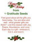 Happy Holidays from Gratitude Seeds
