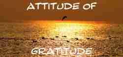 Attitude Gratitude Seagulls Sunrise